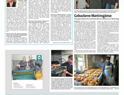 Pressebericht Nürtinger Zeitung vom 12.11.2020